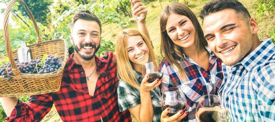 choisir un vin bio en ligne